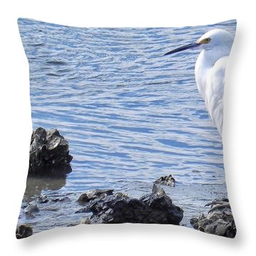 Egret Standing Perfectly Still Throw Pillow
