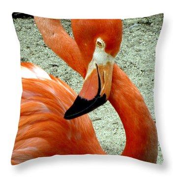 Figure Eight Flamingo Throw Pillow
