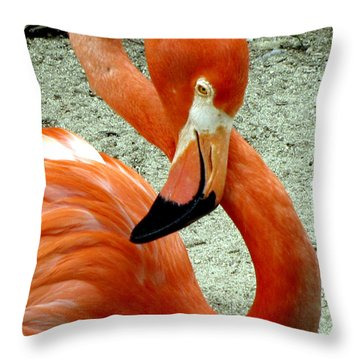 Figure Eight Flamingo Throw Pillow