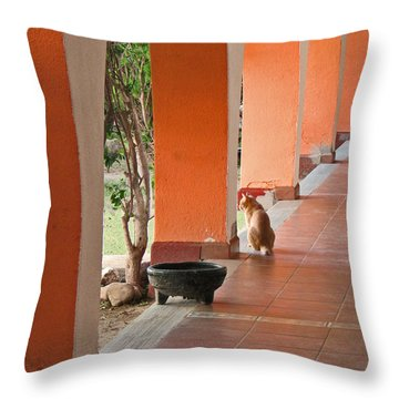 Throw Pillow featuring the photograph El Gato by Marcia Socolik