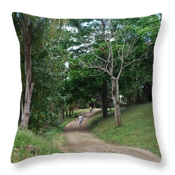 El Valle Throw Pillow