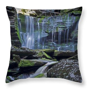 Elakala Falls Number 1 Throw Pillow