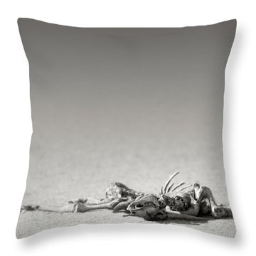 Eland Skeleton In Desert Throw Pillow by Johan Swanepoel
