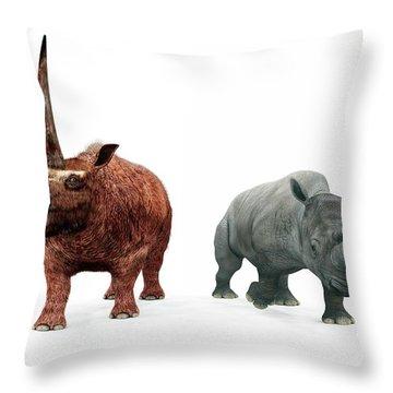 Prehistoric Era Throw Pillows