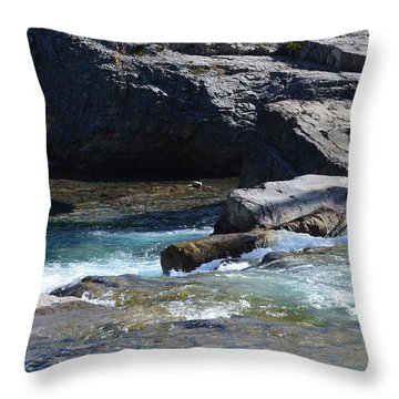 Elbow Falls Landscape Throw Pillow
