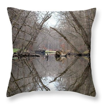 Eldon's Reflection Throw Pillow
