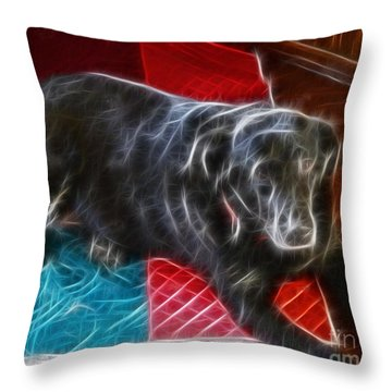 Electrostatic Dog And Blanket Throw Pillow by Barbara Griffin