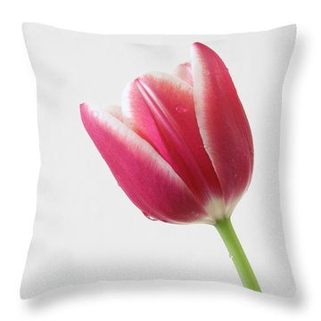 Throw Pillow featuring the photograph Elegance by Anita Oakley