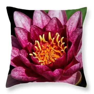 Elegant Lotus Water Lily Throw Pillow