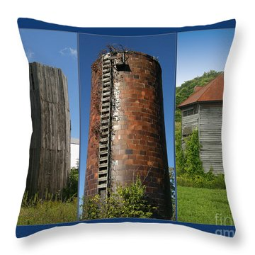 Elegy To Family Farms Throw Pillow by Carol Lynn Coronios