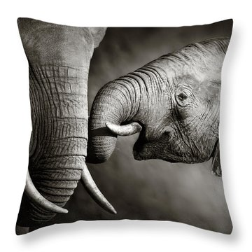 Elephant Affection Throw Pillow