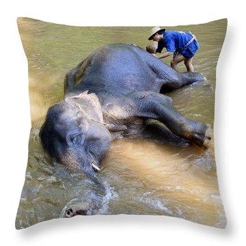 Elephant Bath Throw Pillow