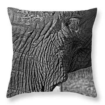 Elephant.. Dont Cry Throw Pillow