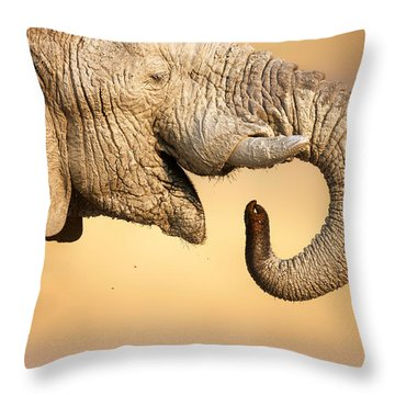 Elephant Drinking Throw Pillow