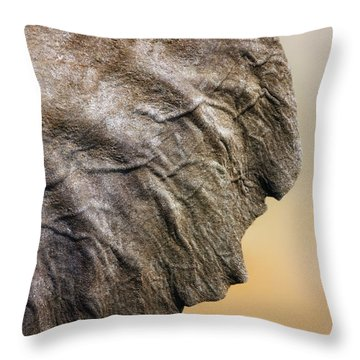 Elephant Ear Close-up Throw Pillow by Johan Swanepoel