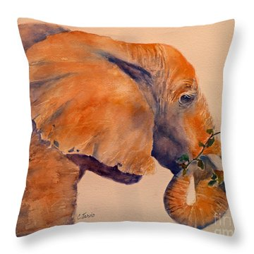 Elephant Eating Throw Pillow