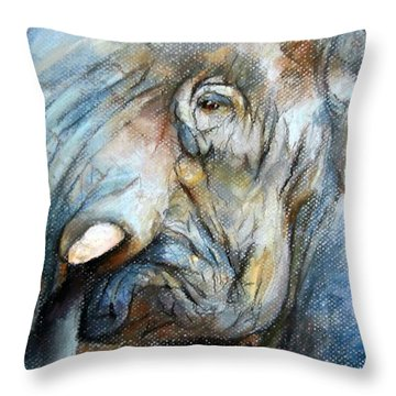 Elephant Eye Throw Pillow