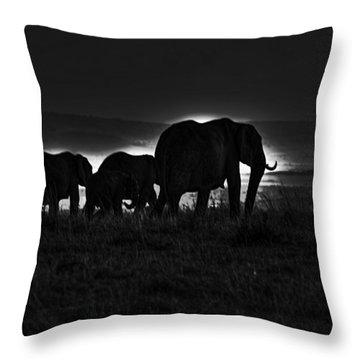 Elephant Family Throw Pillow by Aidan Moran