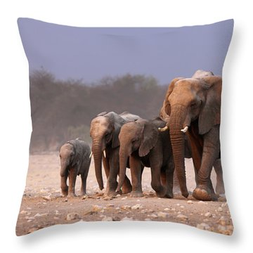 Elephant Herd Throw Pillow by Johan Swanepoel
