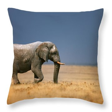 Elephant In Grassfield Throw Pillow