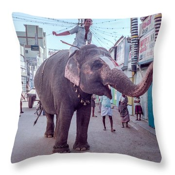 Elephant In The Street In India Throw Pillow