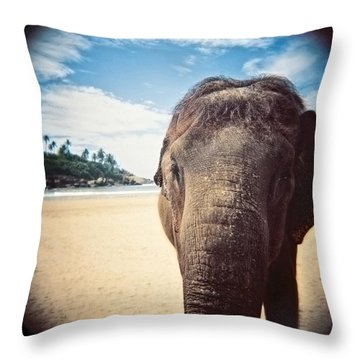 Elephant On The Beach Throw Pillow