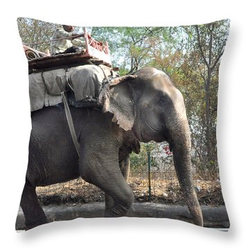 Elephant On The Road In India Throw Pillow by Diane Lent