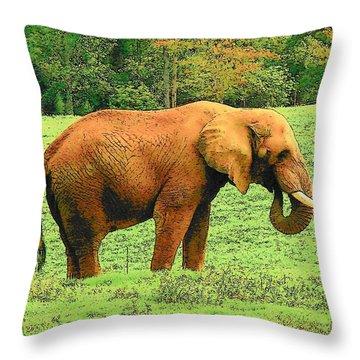 Throw Pillow featuring the photograph Elephant by Rodney Lee Williams