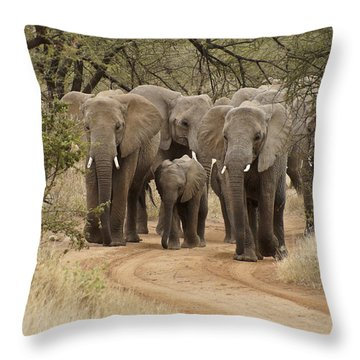 Elephants Have The Right Of Way Throw Pillow