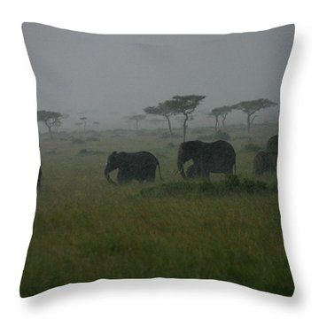 Elephants In Heavy Rain Throw Pillow
