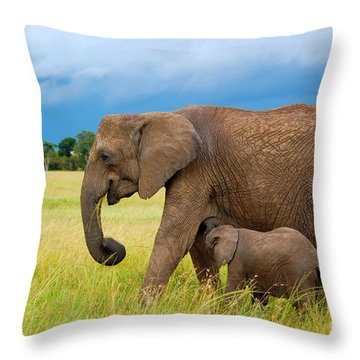 Elephants In Masai Mara Throw Pillow by Charuhas Images