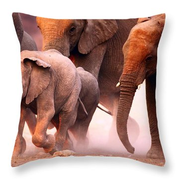 Elephants Stampede Throw Pillow