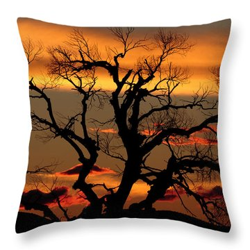 Elgin Sunset Throw Pillow by Beverly Parks