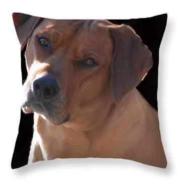 Throw Pillow featuring the photograph Eli by Mim White