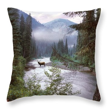 Elk Crossing 2 Throw Pillow