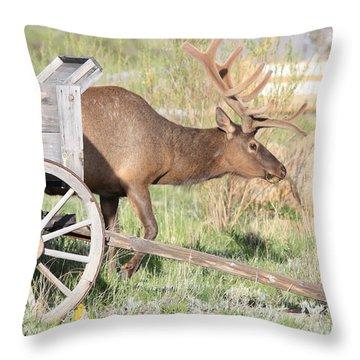 Elk Drawn Carriage Throw Pillow