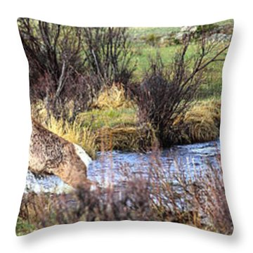 Elk In Motion Throw Pillow