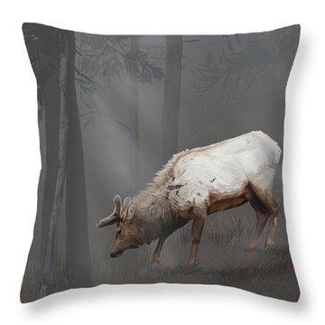 Elk In Velvet Fog Throw Pillow