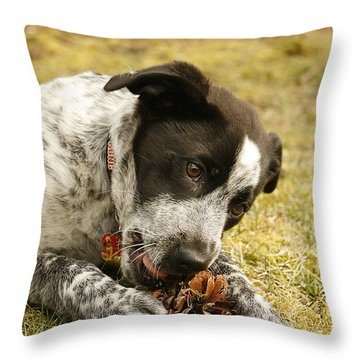 Ellie Vs. The Pine Cone Throw Pillow by Kristia Adams