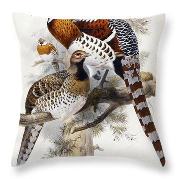 Elliot's Pheasant Throw Pillow by Joseph Wolf