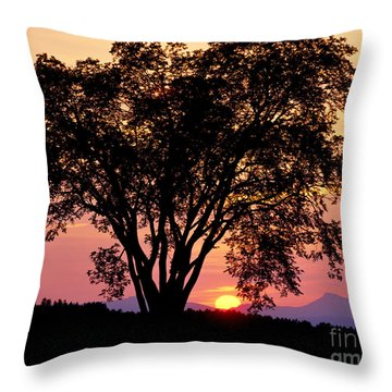 Throw Pillow featuring the photograph Elm At Sunset by Alan L Graham