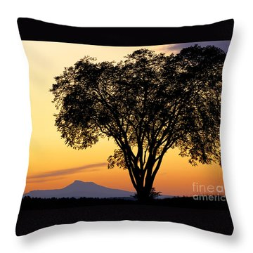 Elm At Twilight Throw Pillow