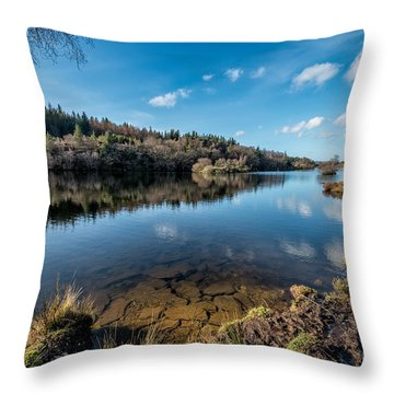 Elsi Reservoir Throw Pillow by Adrian Evans