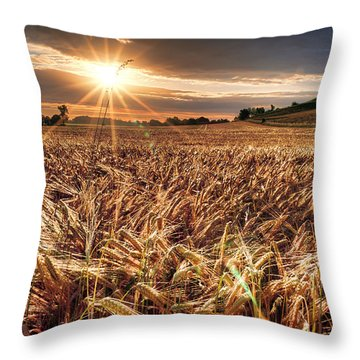 Elysian Fields Throw Pillow