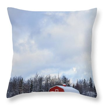 Embrace The Cold Throw Pillow