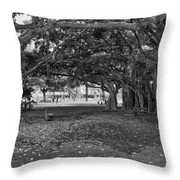 Embraced By Trees Throw Pillow by Douglas Barnard