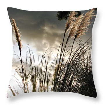 Embracing The Mystery Throw Pillow