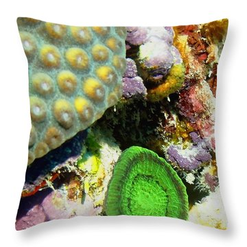 Emerald Artichoke Coral Throw Pillow by Amy McDaniel