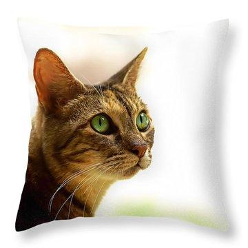 Throw Pillow featuring the photograph Emerald Eyes by Olga Hamilton