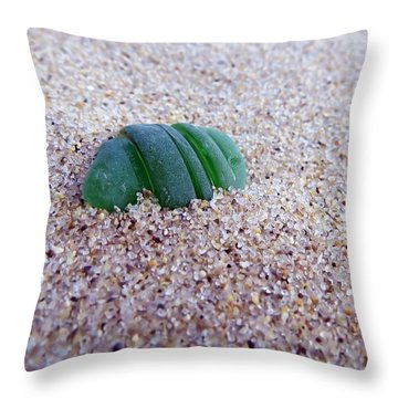 Throw Pillow featuring the photograph Emerald by Janice Drew